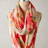 Water Gardens Infinity Scarf by Anthropologie Pink All Scarves