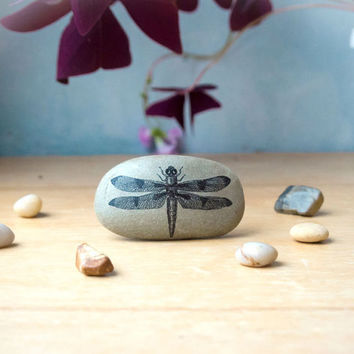 Dragonfly/ Dragonfly Gifts/ Dragonfly Decor/ Office Desk/ Paperweight/ Animal Gifts/ Dragonfly Art/ Desk Assesories/ Office Decor