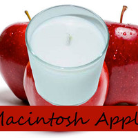 Macintosh Apple Scented Candle in Tumbler 13 oz