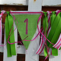 Lime Green and Hot Pink High Chair fabric banner 1st birthday decor photo prop ready to ship