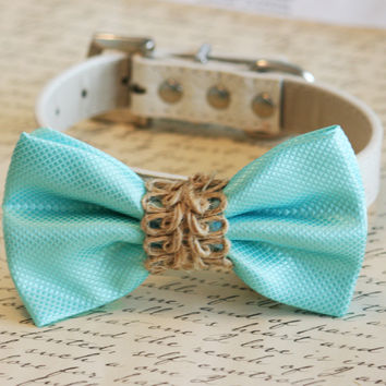 Blue dog bow tie, Beach wedding, Country wedding,Blue Bow attached to leather collar, Blue dog bow tie, Dog Lovers, Dog birthday gift