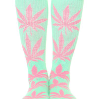 MINT/PINK PLANTLIFE SOCKS