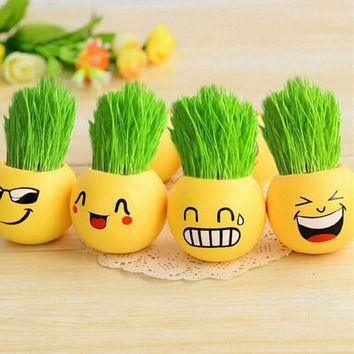 Hair Style Ceramic Cartoon Expression Emoji Print Flower Pot with Magic Grass Plant Seed Garden Mini Vase Planter Nursery Supplies Home DIY