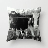 Cows Throw Pillow by Kirby Koch