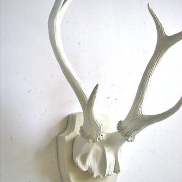 Faux Antlers Plaque Wall Hanging Rustic Modern Wall Mount Wall Decor in white with white antlers