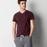 AEO Legend V-Neck T-Shirt