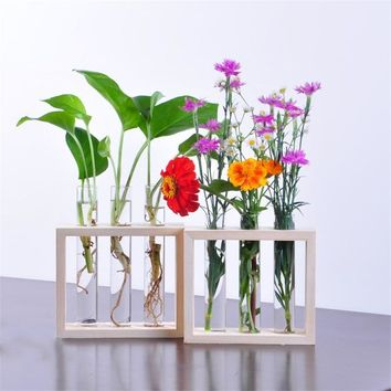 Test Tubes Vase with Wooden Frame