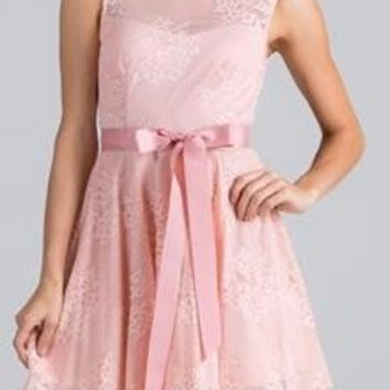 Point Of Perfection Illusion Blush Lace Tulle Dress
