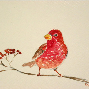 Common rosefinch. Original watercolor painting. Unique christmas card. Nature art from Finland.