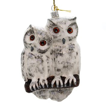 Holiday Ornaments TWO OWLS Glass Hand Painted 186R