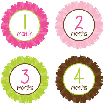Baby Month Stickers Baby Monthly Stickers Girl Monthly Shirt Stickers Pom Pom Pink Green Brown Shower Photo Prop Baby Milestone Sticker 317