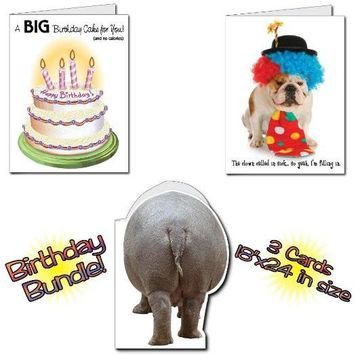 "18""x24"" BIG Birthday Cards, Set of 6 Funny Cards, 2 Each of 3 Designs,"