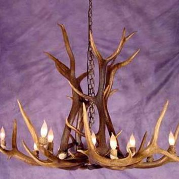 LARGE SINGLE TIER ELK ANTLER CHANDELIER