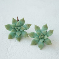 Green Blue Succulent Dangle Earrings Wholesale Big Large Earrings Succulent Jewelry Jewelley Women Accessory Wedding Bridal Birthday Gifts