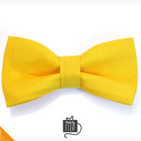 "Pet Bow Tie - ""Treasure Hunter"" - Yellow Detachable Bowtie for Cats + Dogs"