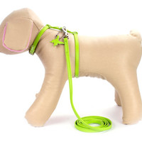 Adjustable Dog Harness and Lead set for Small Dog Breeds Genuine Leather Green