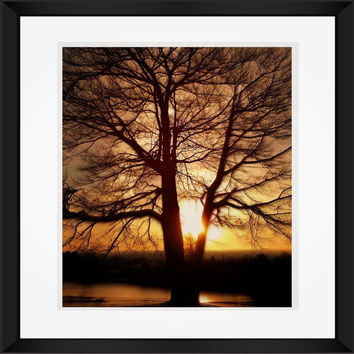 Landscape photography Sunspot tree dusk photography Michigan Sunset large poster wall art home decor