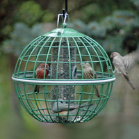 Nuttery Globe Bird Feeders - Bird Seed Feeders - Squirrel Proof Feeder