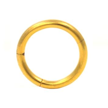 Gold Plated Segment Ring Seamless Hoop 14G (2 Sizes)