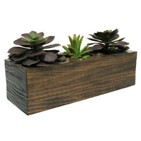 Mini Planter, Succulent Planter, Wood Planter, Planter Box, Modern Planter, Succulent Pot, Geometric Planter, Indoor Planter, Rustic Planter