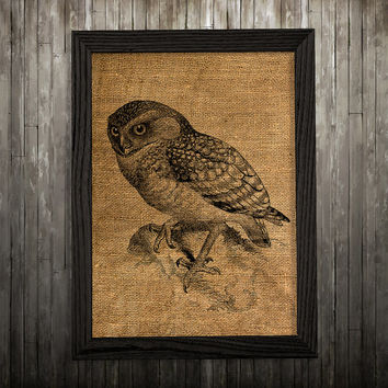 Owl print Bird decor Animal poster Burlap print BLP180