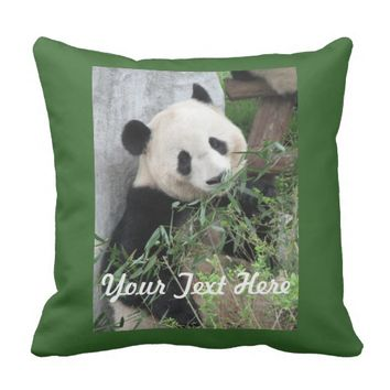 Panda Pillow, Solid Green Back Throw Pillow