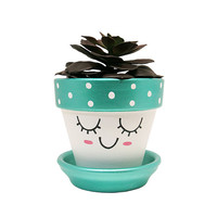 Succulent Pot, Face Planter, Cute Planter, Terracotta Planter, Plant Pot, Flower Pot, Indoor Planter, Succulent Planter, Blue Planter