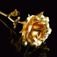 INFMETRY:: Golden Rose A Elegant Gifts For Your Lover - Home&Decor