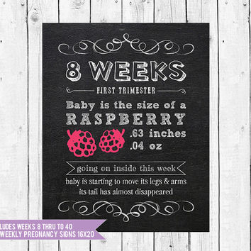 Pregnancy Chalkboard Photo Prop, Baby is the size of, Pregnancy signs, Pregnancy Milestones, Bi-Weekly pregnancy sign, Set of 17 16x20,