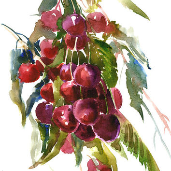 Cherries, Original watercolor painting, 12 X 9 in, watercolor art, cherry painting, fruits painting