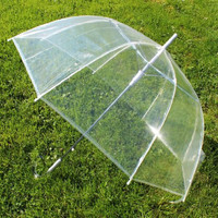 "Cloak 46"" ARC Dome/Bubble Auto Open Clear Umbrellas"