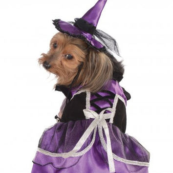 Purple Witch Dog Costume