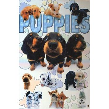 PUPPIES COLLAGE POSTER Amazing Cute & Funny RARE 24X36