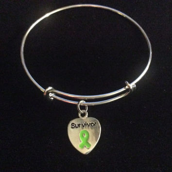 Lyme Disease Awareness silver bangle / Alex and Ani inspired / adjustable bangle / stackable bangle