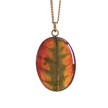Colourful real leaf necklace - Pressed autumn leaf jewelry - Botanical jewellery - Nature inspired necklace - Autumn necklace, oval bronze
