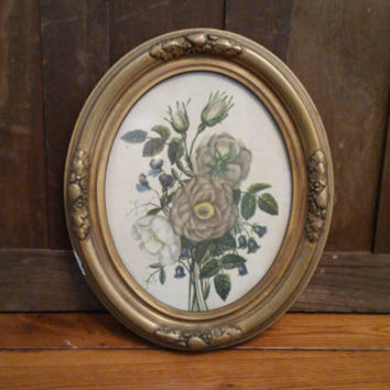 Vintage Oval Ornate Gold Gesso Wood Frame with Botanical Print
