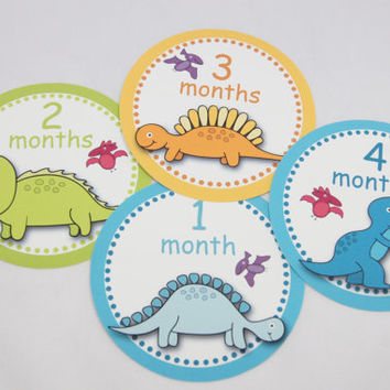 Monthly Stickers, Baby Month Sticker, Baby Stickers, Baby Milestone Stickers, Photo Prop Baby Stickers, 12 Month Stickers Baby Boy B66