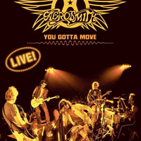 Aerosmith: You Gotta Move 11x17 Movie Poster (2004)