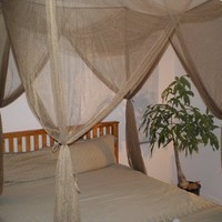 Brown 4 Corner / Post Bed Canopy Functional Mosquito Net Queen King