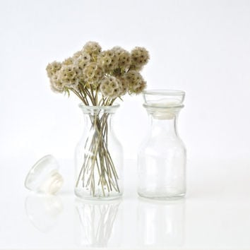 GLASS APOTHECARY JARS, Pair of Clear Belgian Glass Bottles with Lids, Two Small Canisters, Made in Belgium