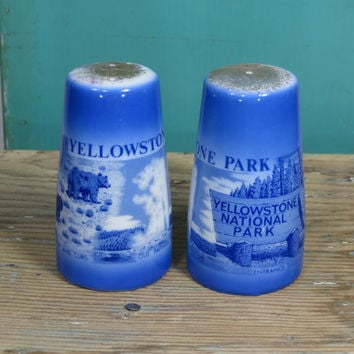 Yellowstone National Park Salt & Pepper Shakers • Japan • Vintage Road Trip Souvenir • Circa 1950s Porcelain • Blue and White • Collectible