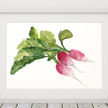 Vegetable print Radish poster Kitchen art Watercolor print ACW227