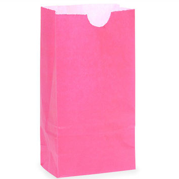 12 Pink Lunch Bag Paper Favor Treat Bag