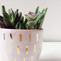 Succulent Planter with Gold - Terracotta Planter - Gold Ceramics - Gold Home Decor - Ceramics and Pottery