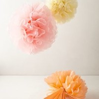 Floating Pom-Poms   by Anthropologie Multi Set Of 3 House & Home