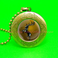 game of thrones house baratheon pendant locket necklace, a song of ice and fire pendant locket necklace,game of thrones jewelry