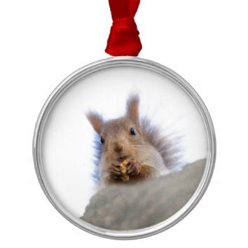 Squirrel with a walnut metal ornament