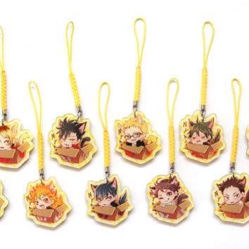 Haikyuu Cat Charms set