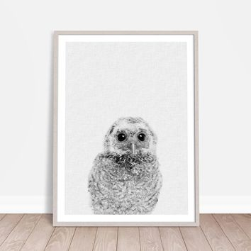 Cute Animal Owl Canvas Painting Wall Picure Nursery Decor, Hairy Little Owl Canvas Print Poster Kids Room Wall Art Decor
