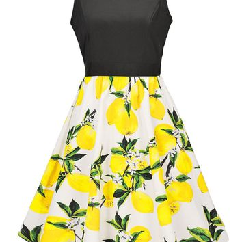 Casual Round Neck Lemon Printed Skater Dress